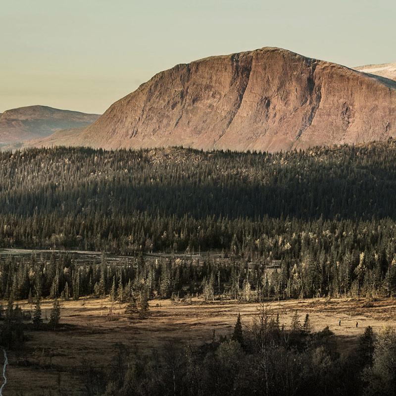 Fjällhus Borgafjäll tomter i  Lappland